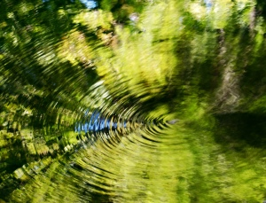 kringeninwater1
